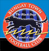 Bungay Town Football club